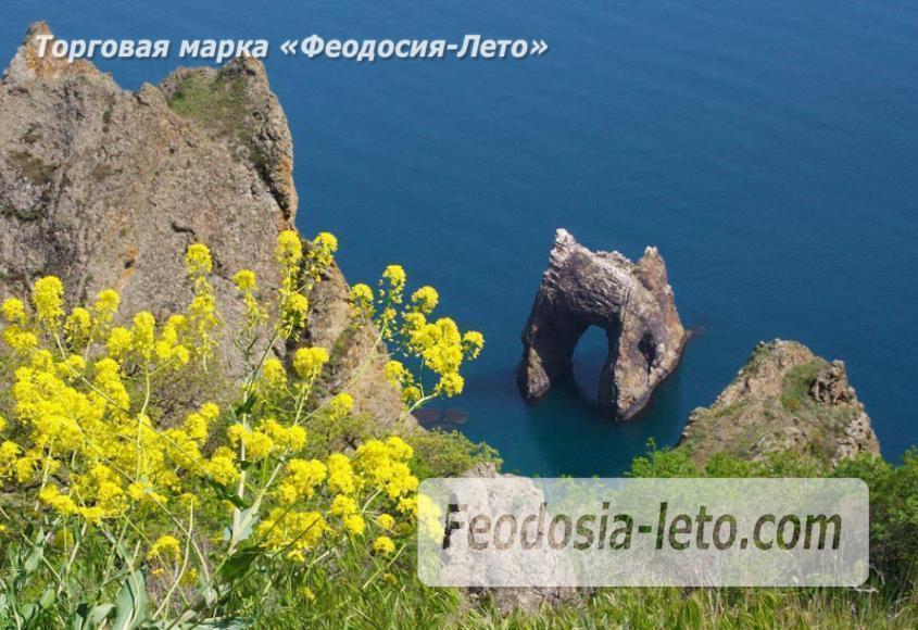 Карадагский заповедник в Крыму - фотография № 5