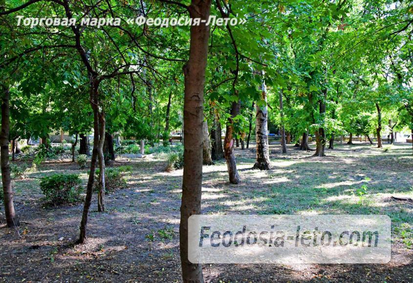 Парки Феодосии - Морсад - фотография № 6