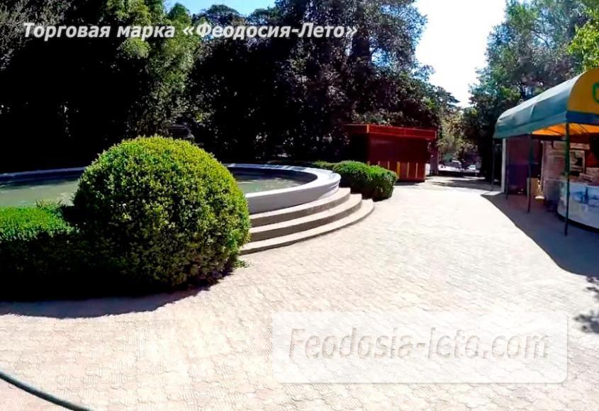 Никитский ботанический сад - фотография № 11