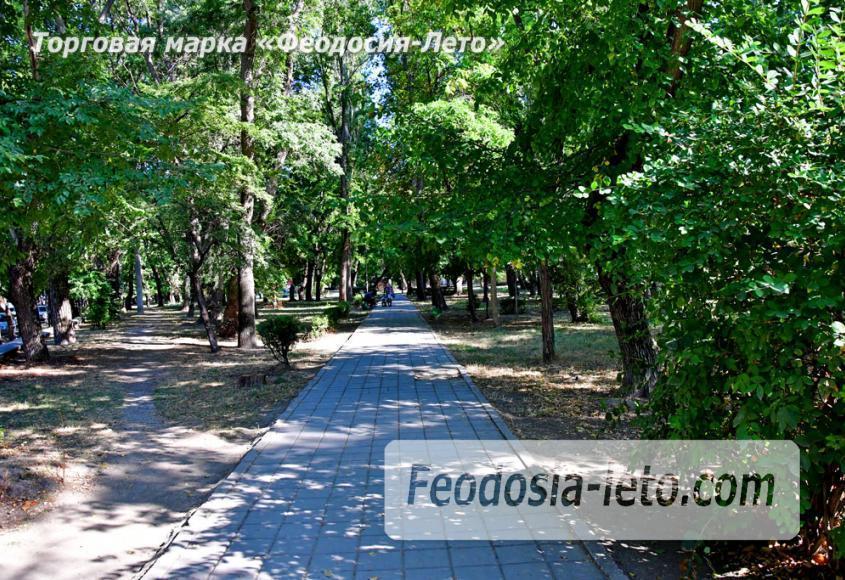 Парки Феодосии - Морсад - фотография № 7