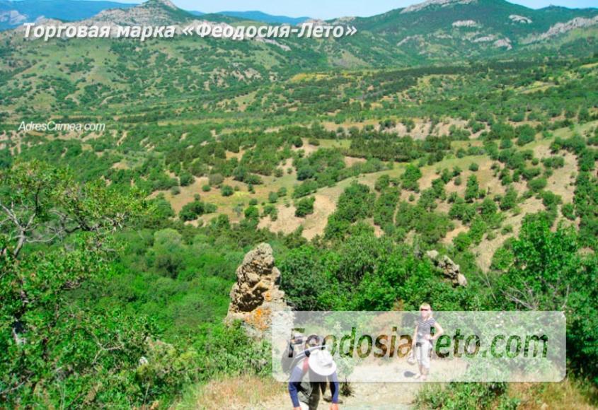 Карадагский заповедник в Крыму - фотография № 8