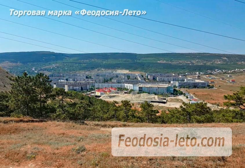 Экскурсии в Феодосии. Лес и Лысая гора - фотография № 5