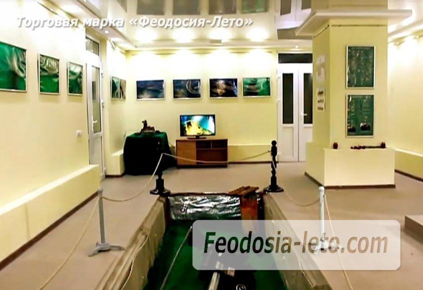Музей подводной Археологии в Феодосии - фотография № 4
