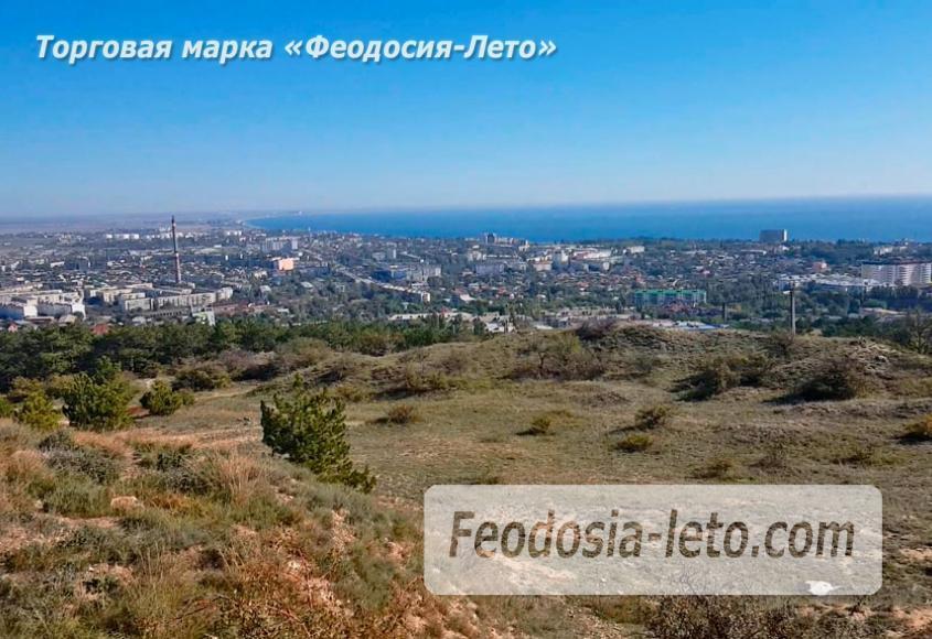 Экскурсии в Феодосии. Лес и Лысая гора - фотография № 6