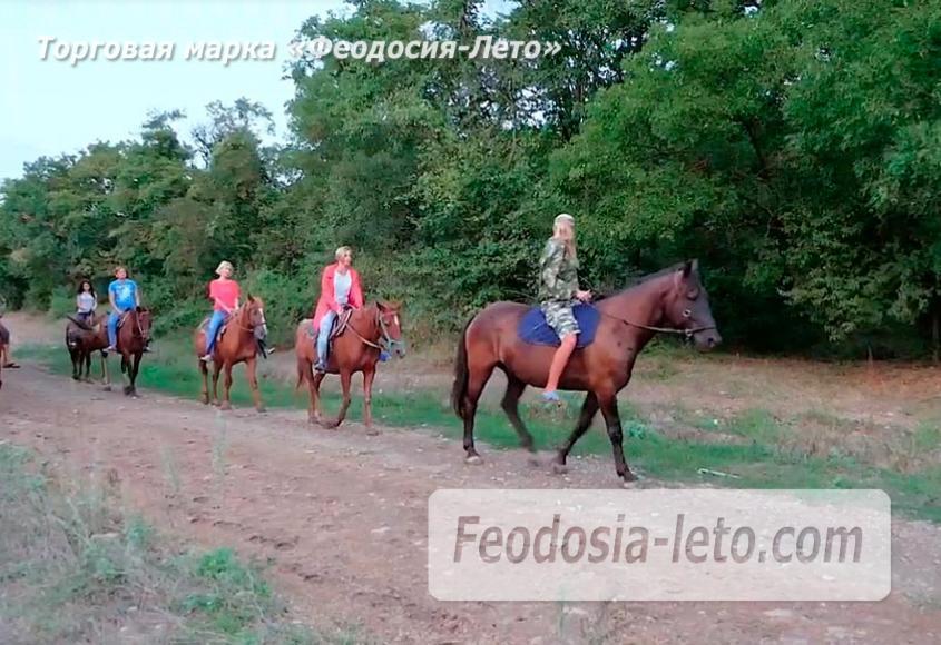 Конные прогулки в Феодосии - фотография № 9
