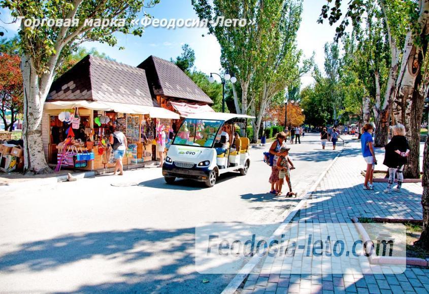 Отдых в Крыму г. Феодосия проспект Айвазовского - фотография № 52