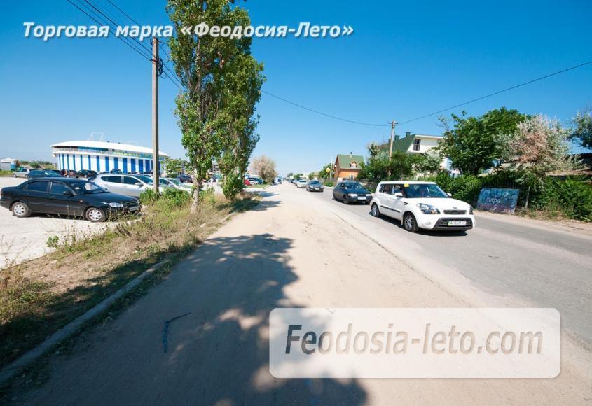 Крым Феодосия Дельфинарий Немо - фотография № 9