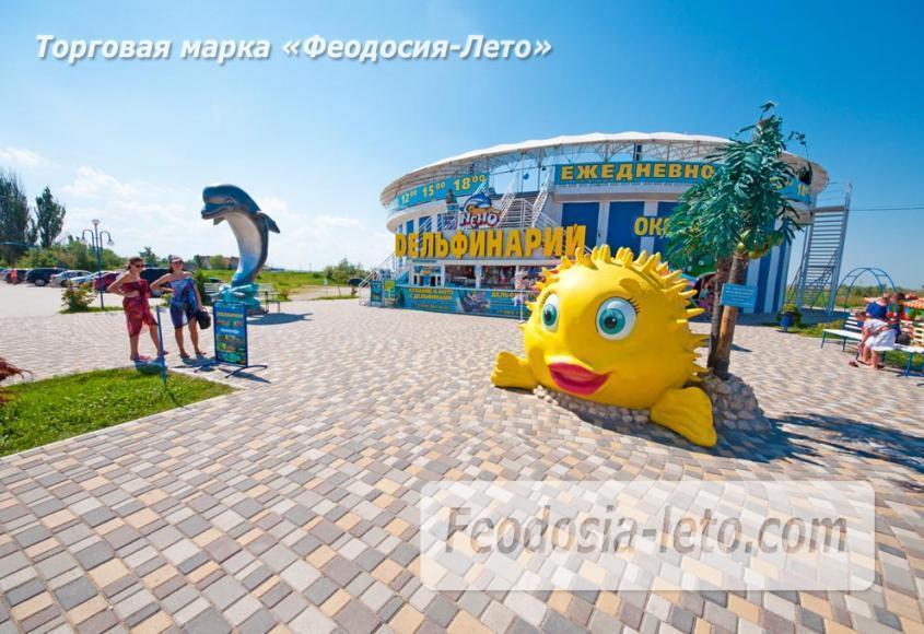 Крым Феодосия Дельфинарий Немо - фотография № 15