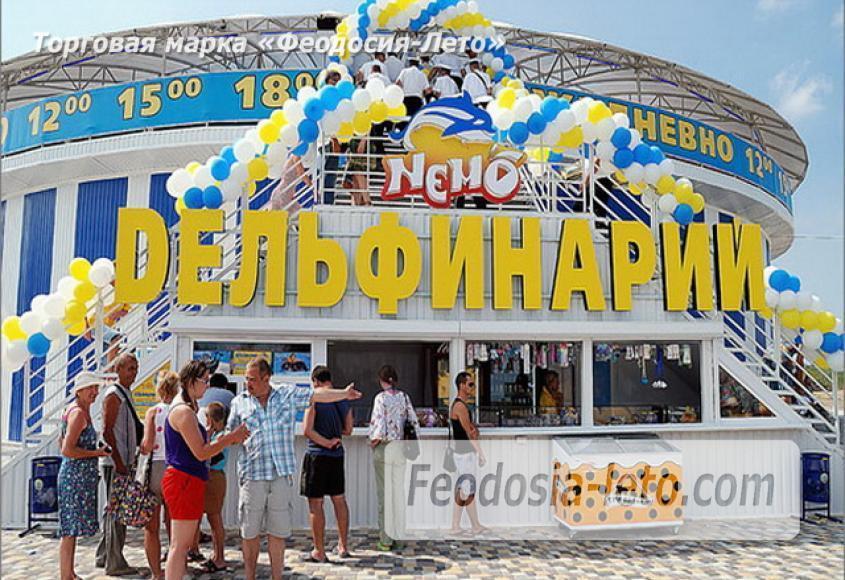 Крым Феодосия Дельфинарий Немо  - фотография № 1