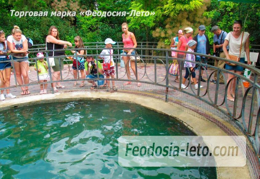 Крым Белогорск парк львов Тайган - фотография № 15