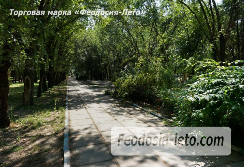 Комсомольский парк в Феодосии - парки города - фотография № 13