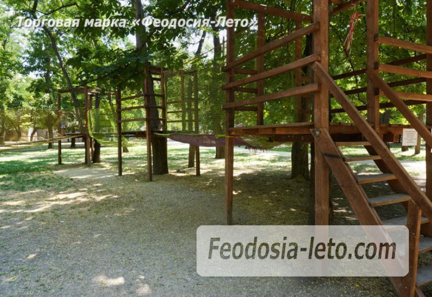 Комсомольский парк в Феодосии - парки города - фотография № 17