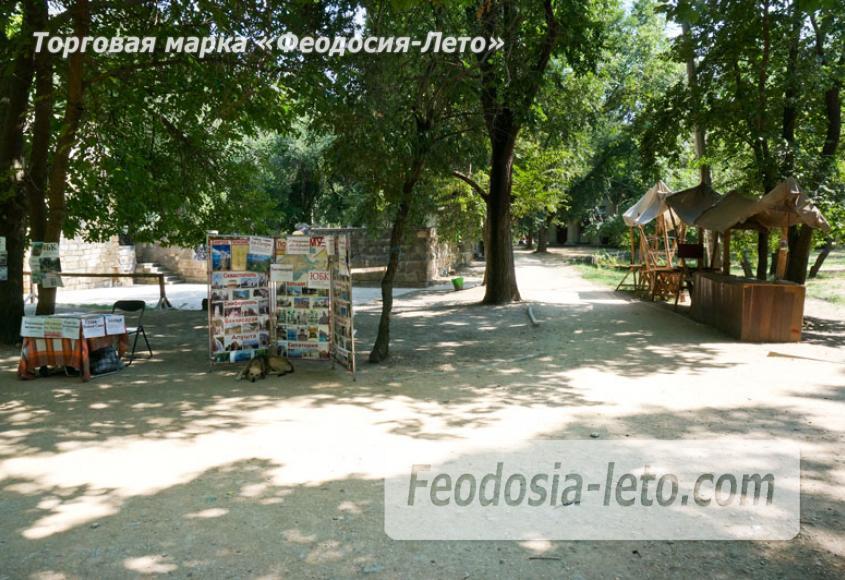 Комсомольский парк в Феодосии - парки города - фотография № 19