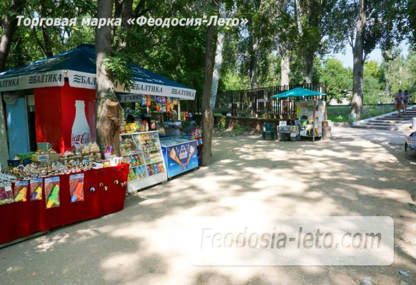 Комсомольский парк в Феодосии - парки города - фотография № 22