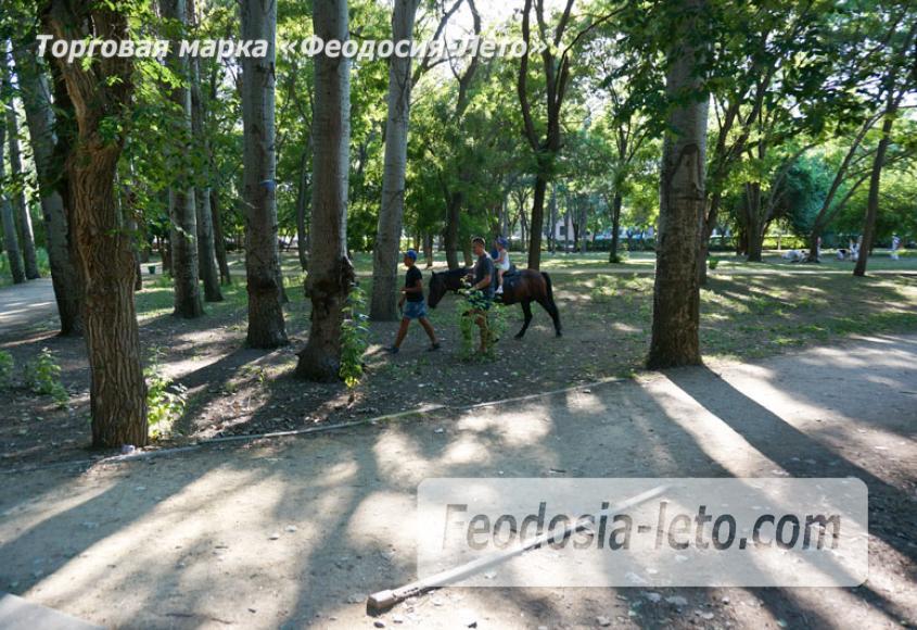 Комсомольский парк в Феодосии - парки города - фотография № 35