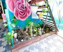 Во дворе коттеджа в г. Феодосия - фотография № 1